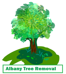 Albany Tree Removal